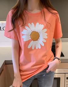 纯棉大码女装2020夏装小V家原模特5615#实拍白色雏菊印花短袖T恤
